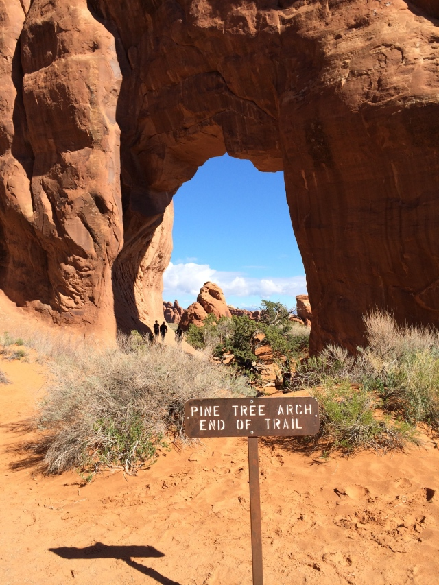 Pine Tree Arch: Arches National Park (Moab, UT)