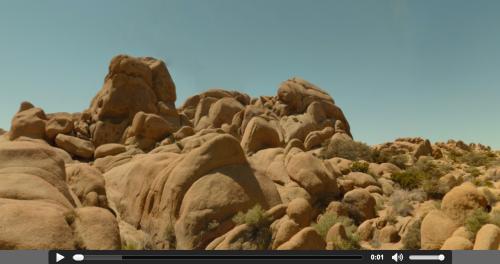 Screenshot from the Joshua Tree visualization